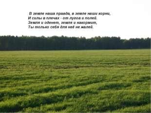 В земле наша правда, в земле наши корни, И силы в плечах - от лугов и полей.