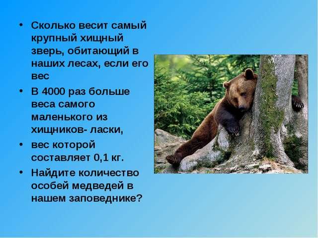 Сколько весит самый крупный хищный зверь, обитающий в наших лесах, если его в...