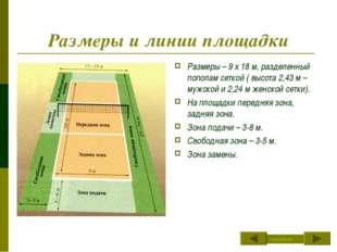 Размеры и линии площадки Размеры – 9 х 18 м, разделенный пополам сеткой ( выс