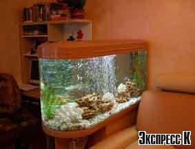 Фото - Аквариум - живой уголок в вашем доме.