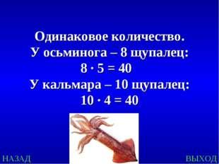 НАЗАД ВЫХОД Одинаковое количество. У осьминога – 8 щупалец: 8 ∙ 5 = 40 У каль