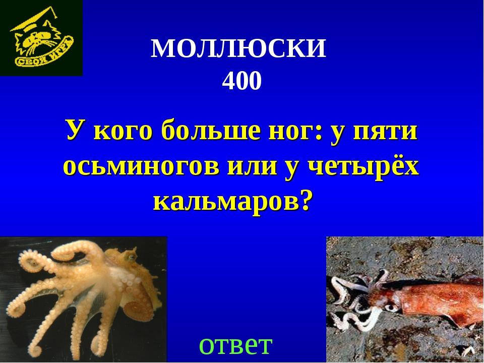 МОЛЛЮСКИ 400 У кого больше ног: у пяти осьминогов или у четырёх кальмаров?...