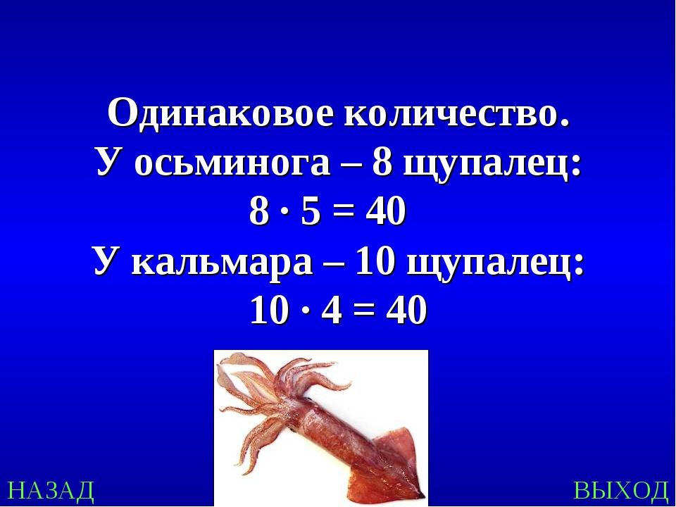НАЗАД ВЫХОД Одинаковое количество. У осьминога – 8 щупалец: 8 ∙ 5 = 40 У каль...