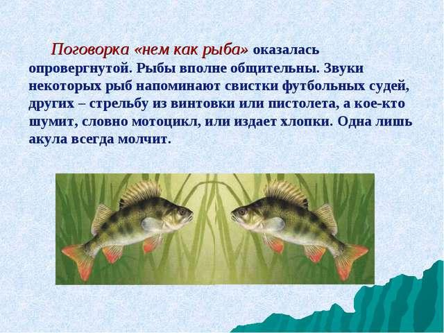 Поговорка «нем как рыба» оказалась опровергнутой. Рыбы вполне общительны. Зв...