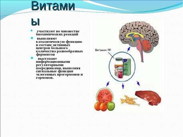 Витамиы участвуют во множестве биохимических реакций выполняют каталитическую...
