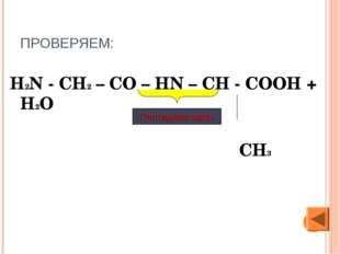 ПРОВЕРЯЕМ: H2N - CH2 – CO – HN – CH - COOH + Н2О СН3 Пептидная связь