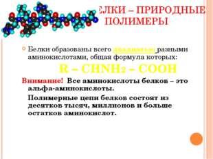 БЕЛКИ – ПРИРОДНЫЕ ПОЛИМЕРЫ Белки образованы всего двадцатью разными аминокис
