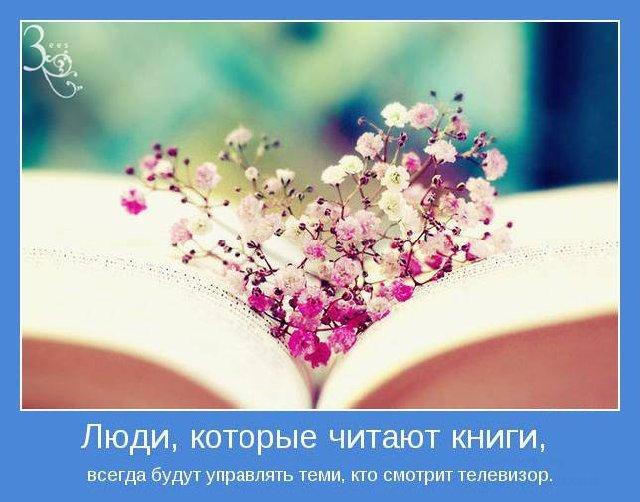 C:\Users\User\Pictures\bb4e15e5e845.jpg