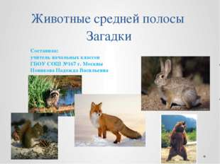 Животные средней полосы Загадки Составила: учитель начальных классов ГБОУ СОШ