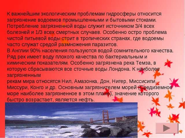 К важнейшим экологическим проблемам гидросферы относится загрязнение водоемов...