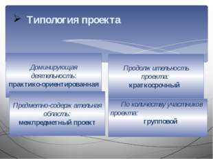 Типология проекта Доминирующая деятельность: практико-ориентированная Предмет