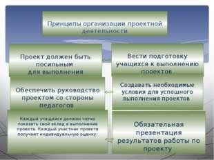 Принципы организации проектной деятельности Проект должен быть посильным для