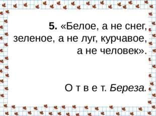 5.«Белое, а не снег, зеленое, а не луг, курчавое, а не человек». О т в е т.
