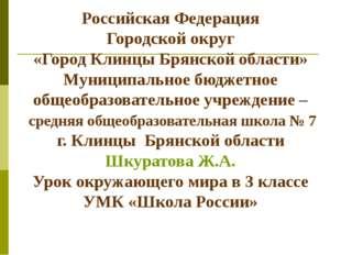 Российская Федерация Городской округ «Город Клинцы Брянской области» Муниципа
