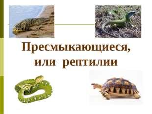 Пресмыкающиеся, или рептилии