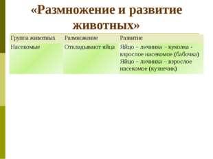 «Размножение и развитие животных» Группа животных Размножение Развитие Насеко