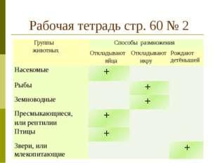 Рабочая тетрадь стр. 60 № 2 Группы животных Способыразмножения Откладывают яй
