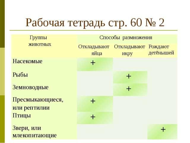 Рабочая тетрадь стр. 60 № 2 Группы животных Способыразмножения Откладывают яй...
