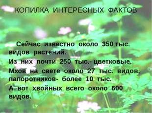 КОПИЛКА ИНТЕРЕСНЫХ ФАКТОВ Сейчас известно около 350 тыс. видов растений. Из н
