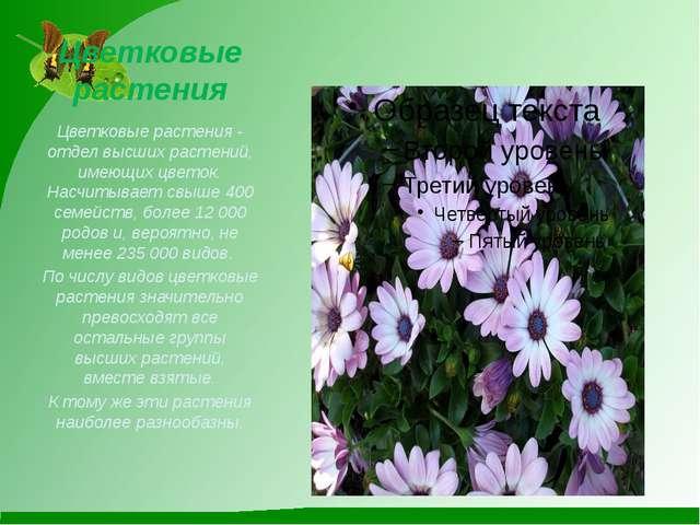 Цветковые растения Цветковые растения-отдел высших растений, имеющих цветок....