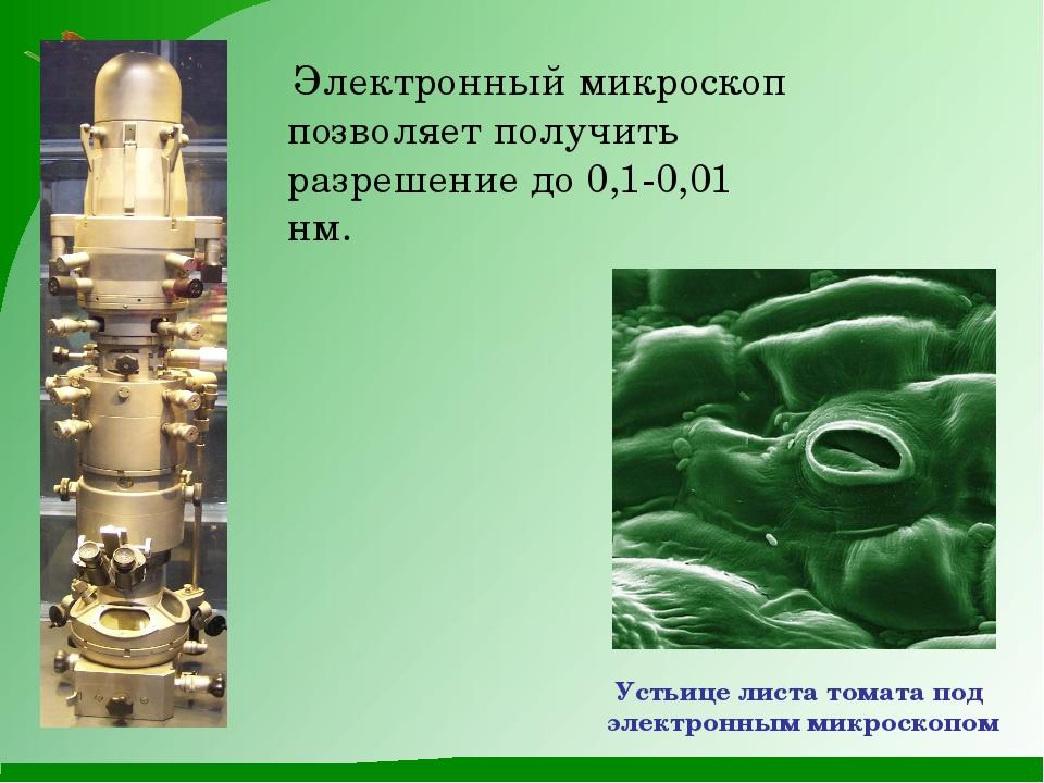 Электронный микроскоп позволяет получить разрешение до 0,1-0,01 нм. Устьице...