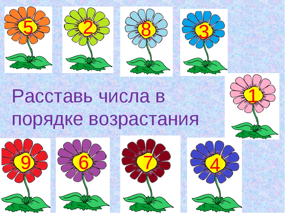 Расставь числа в порядке возрастания 5 5 2 8 3 1 9 6 7 4