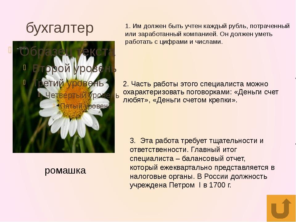 бухгалтер ромашка 1. Им должен быть учтен каждый рубль, потраченный или зараб...
