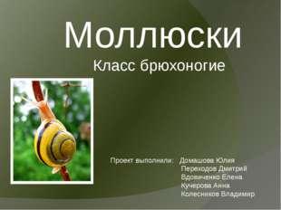 Моллюски Класс брюхоногие Проект выполнили: Домашова Юлия Переходов Дмитрий В