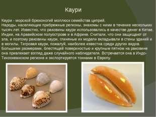 Каури Каури - морской брюхоногий моллюск семейства ципрей. Народы, населяющие