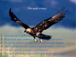 Отгадай птицу: Крылатый, горластый, красные ласты. Всех я за день навещу, вс