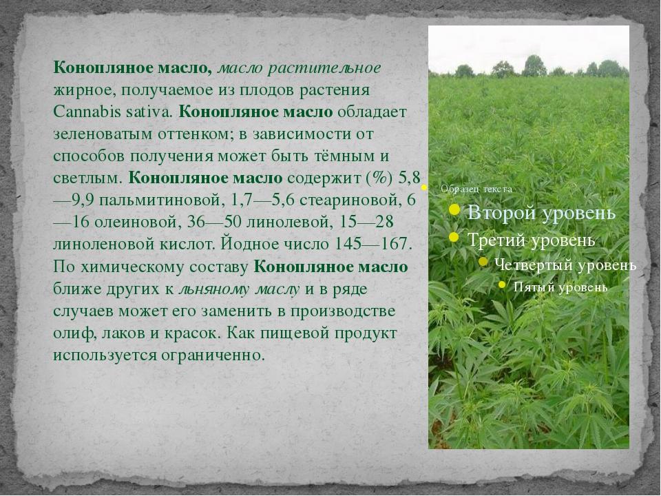 Конопляное масло, масло растительное жирное, получаемое из плодов растения Ca...