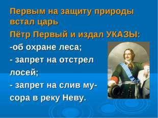 Первым на защиту природы встал царь Пётр Первый и издал УКАЗЫ: -об охране лес