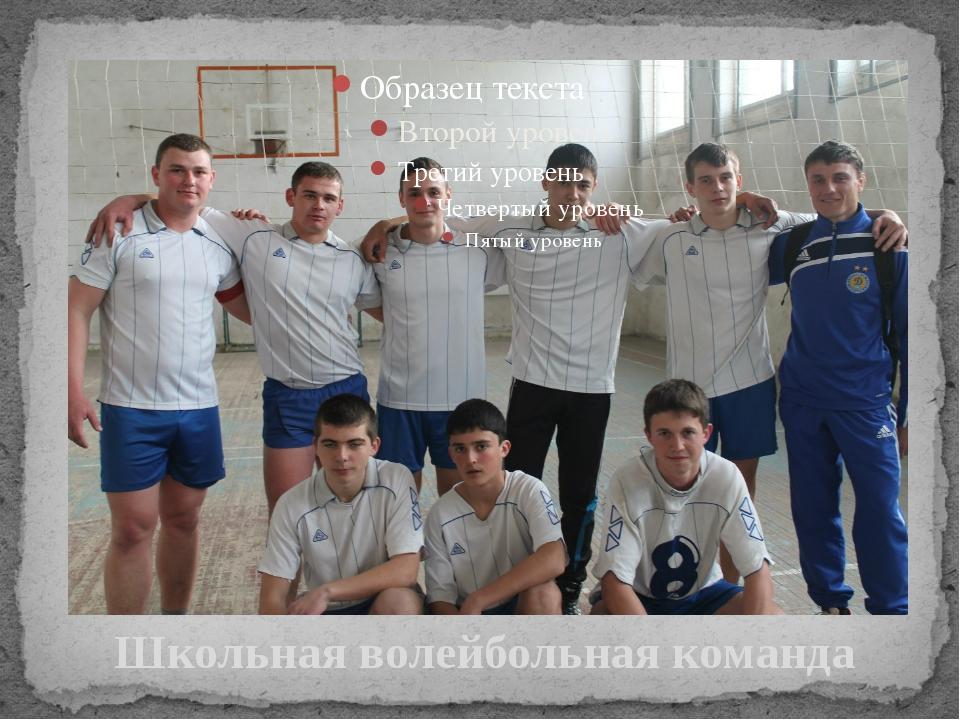 Школьная волейбольная команда