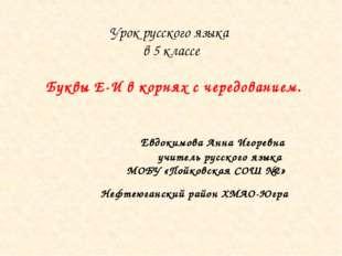 Урок русского языка в 5 классе Буквы Е-И в корнях с чередованием. Евдокимова