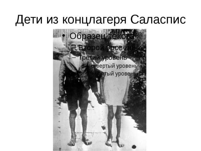 Дети из концлагеря Cаласпис