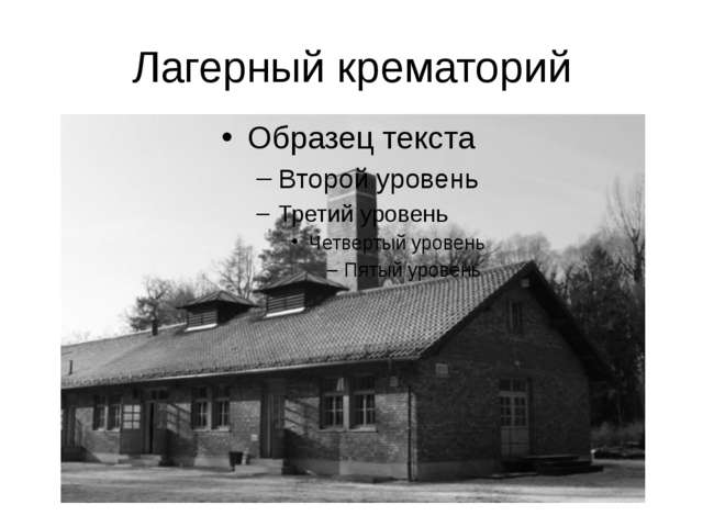 Лагерный крематорий