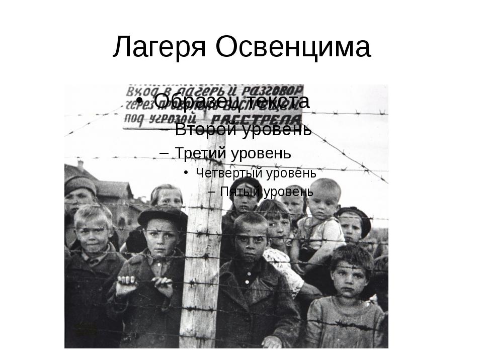 Лагеря Освенцима