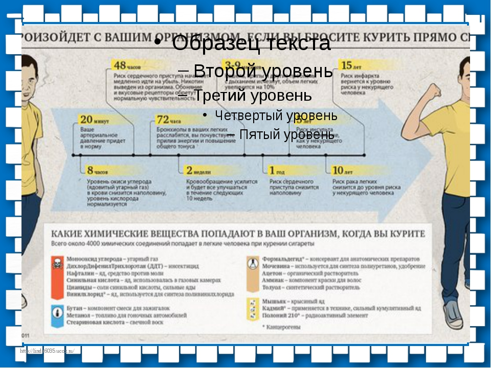 http://linda6035.ucoz.ru/ Что произойдет с вашим организмом, если вы бросите...