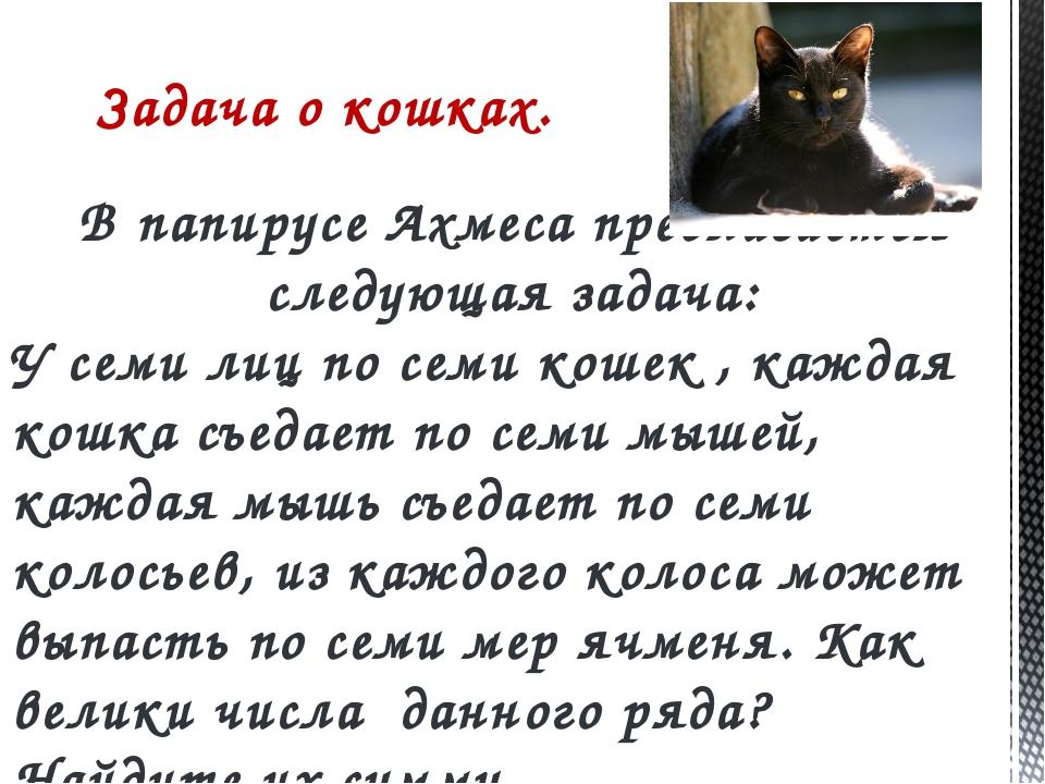 Задача о кошках. В папирусе Ахмеса предлагается следующая задача: У семи лиц...