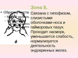 Зона 8. Связана с гипофизом, слизистыми оболочками носа и гайморовых пазух. П