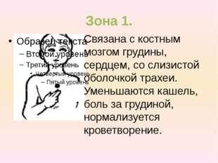 Зона 1. Связана с костным мозгом грудины, сердцем, со слизистой оболочкой тра
