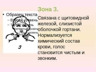 Зона 3. Связана с щитовидной железой, слизистой оболочкой гортани. Нормализуе
