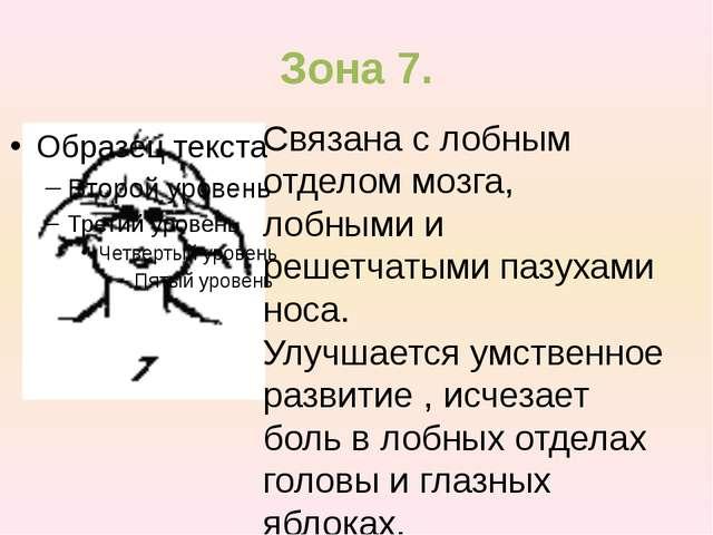 Зона 7. Связана с лобным отделом мозга, лобными и решетчатыми пазухами носа....