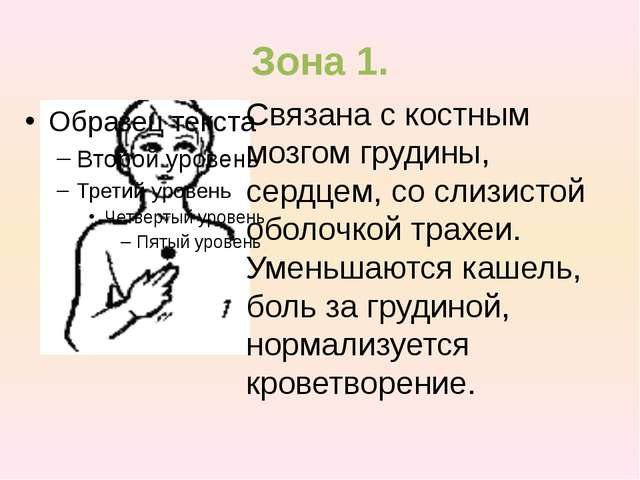 Зона 1. Связана с костным мозгом грудины, сердцем, со слизистой оболочкой тра...