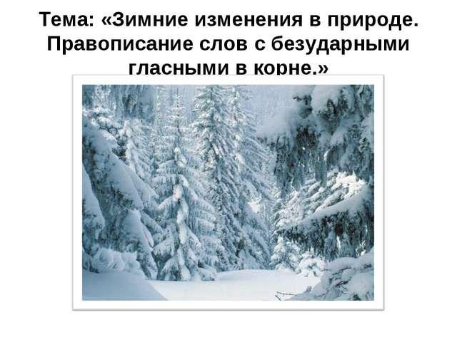 Тема: «Зимние изменения в природе. Правописание слов с безударными гласными в...