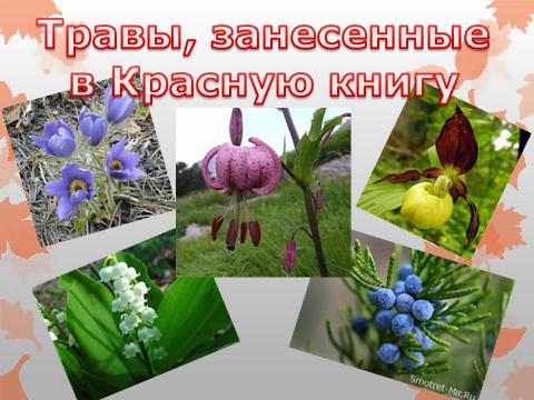 hello_html_m5b3f58f7.png