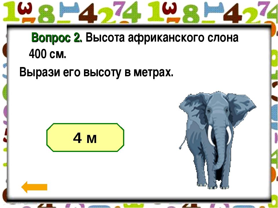 Вопрос 2. Высота африканского слона 400 см. Вырази его высоту в метрах....