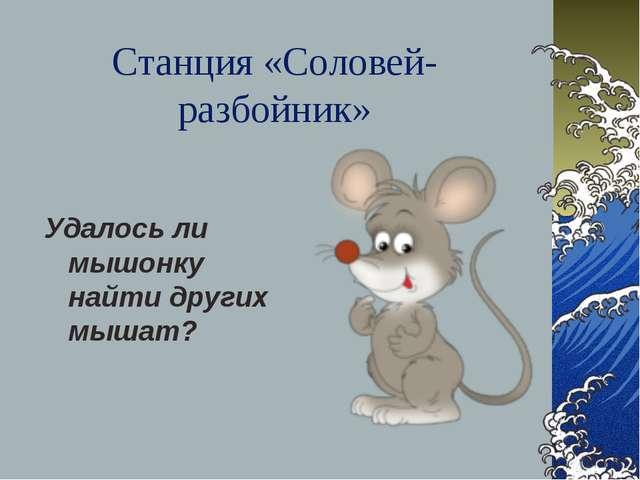 Станция «Соловей-разбойник» Удалось ли мышонку найти других мышат?