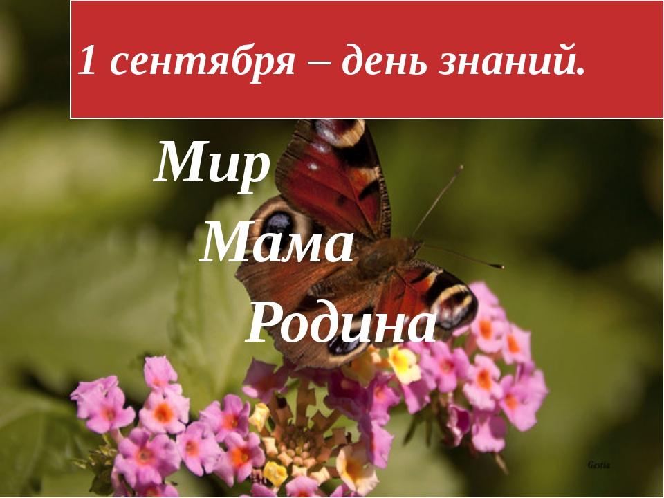 1 сентября – день знаний. Мир Мама Родина