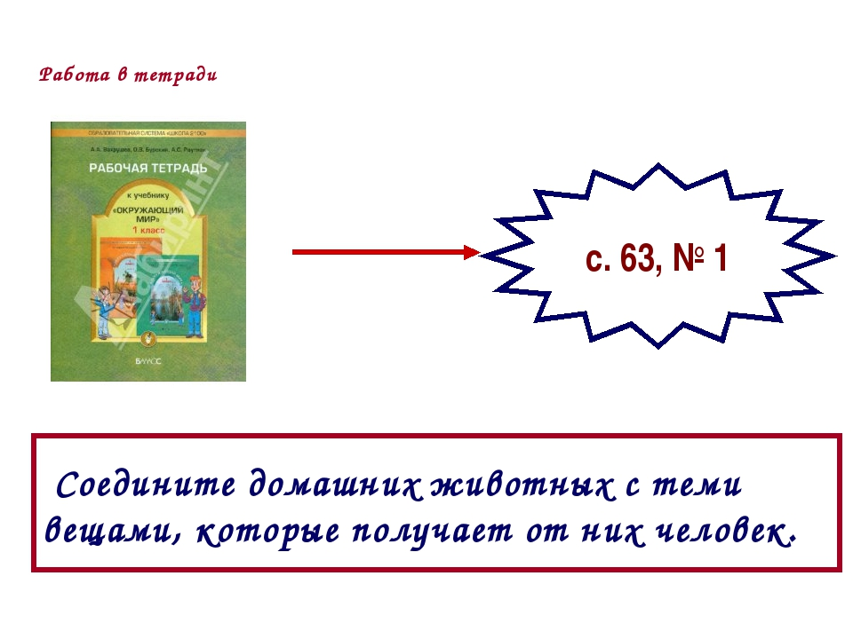 Работа в тетради с. 63, № 1 Соедините домашних животных с теми вещами, которы...